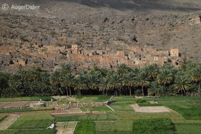 photo,photographie,voyage,Oman